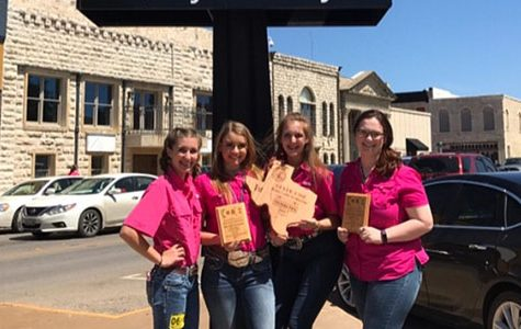 Dairy Cattle Judging Team Takes on Nationals