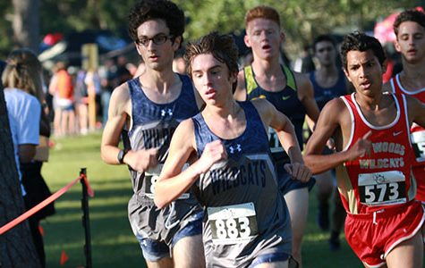 Cross country breaks records at district meet