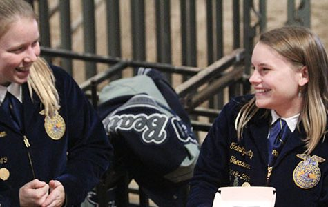 Senior Katelyn Grantham and junior Trinity Beaty both compete on the Horse Judging team.