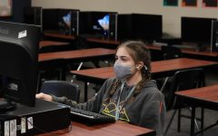 Students and teachers began using the learning management system Schoology this school year.