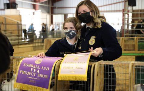 FFA Livestock Show presents three champions