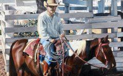 Wheres the Cattle, Bill? by senior Sophie Gleadell